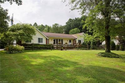 Geauga County Single Family Home For Sale: 14692 Russell Ln