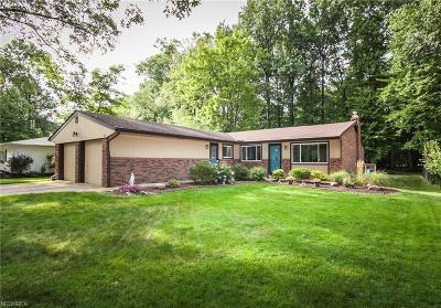 Westlake Single Family Home For Sale: 26490 Strawberry Ln