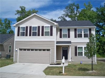 Twinsburg Single Family Home For Sale: 10249 Liberty Cv