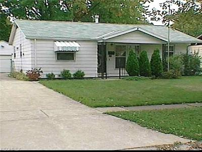 Elyria Single Family Home For Sale: 616 Concord Ave