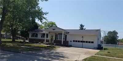 Lorain Single Family Home For Sale: 4108 Marshall Ave