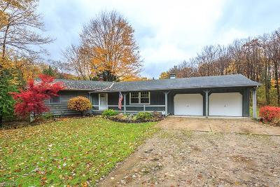 Leroy Single Family Home For Sale: 13620 Radcliffe Rd