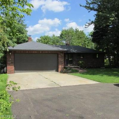 Strongsville Single Family Home For Sale: 20048 Drake Rd