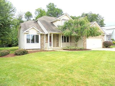 Medina Single Family Home For Sale: 3726 Turnberry Dr