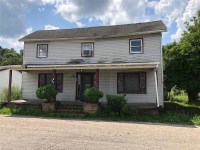 Perry County Single Family Home For Sale: 136 Railroad St