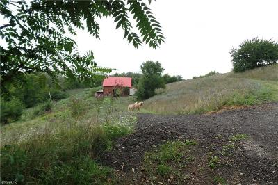Morgan County Residential Lots & Land For Sale: 00 Lowe Ln