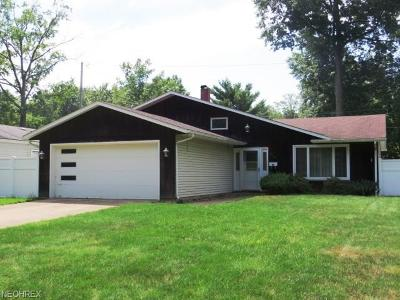 Avon Lake Single Family Home For Sale: 260 Sunset Rd