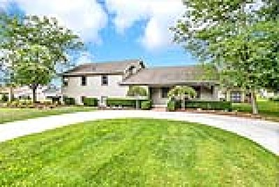 Single Family Home For Sale: 10587 Northfield Dr