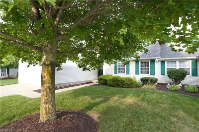 Medina Condo/Townhouse For Sale: 3969 Londonderry Ln