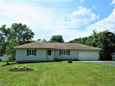 Youngstown Single Family Home For Sale: 4600 Vienna Ave