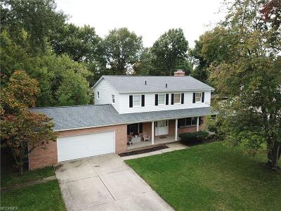 Summit County Single Family Home For Sale: 698 Brookpark Dr
