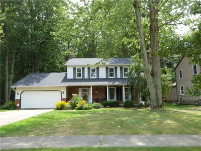 Mentor Single Family Home For Sale: 7410 Faye Ln