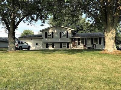 Boardman Single Family Home For Sale: 8467 Hitchcock Rd