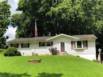 Zanesville Single Family Home For Sale: 209 Downing Dr