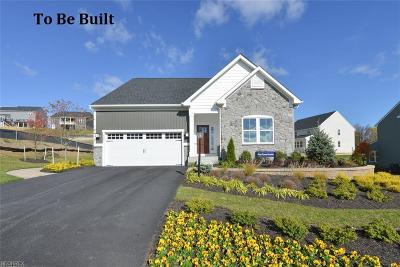 Aurora Single Family Home For Sale: 25 Lakeland Way