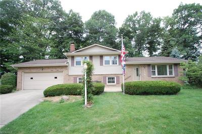 Youngstown Single Family Home For Sale: 5904 Yorktown Ln