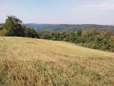 Guernsey County Residential Lots & Land For Sale: 62177 Willow Rd