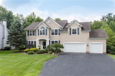 Geauga County Single Family Home For Sale: 107 Alderwood Dr