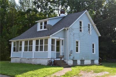 Geneva Single Family Home For Sale: 328 Lockwood St
