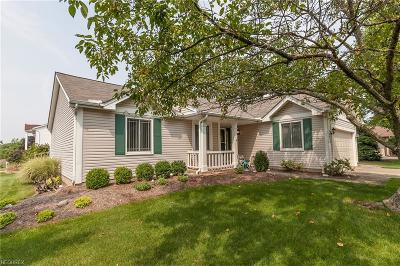 Strongsville Single Family Home For Sale: 10012 Park View Cir