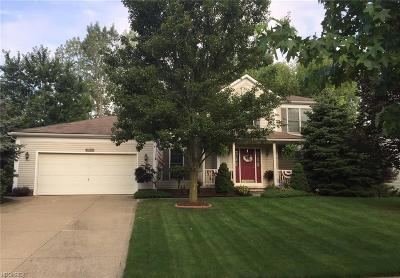 Medina Single Family Home For Sale: 887 Continental Dr