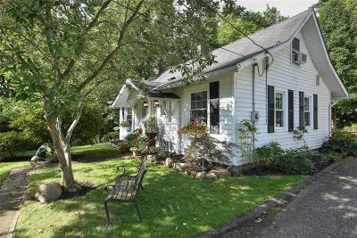 Chagrin Falls Single Family Home For Sale: 290 South Franklin St