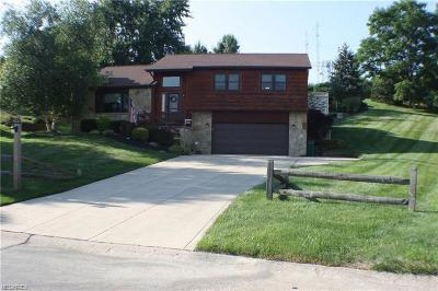 Concord Single Family Home For Sale: 6182 Colleen Dr