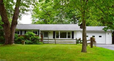 Chagrin Falls Single Family Home For Sale: 18310 Haskins Rd