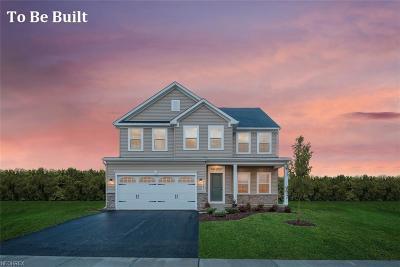 Medina Single Family Home For Sale: 6209 Tyndale Ln