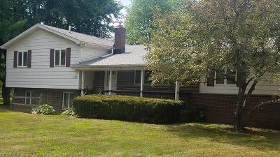 Vienna Single Family Home For Sale: 935 Ridge Road