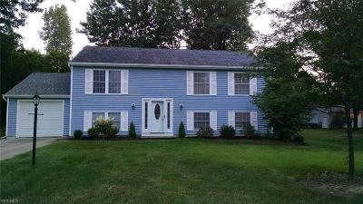 Painesville Township Single Family Home For Sale: 1580 Bridle Path