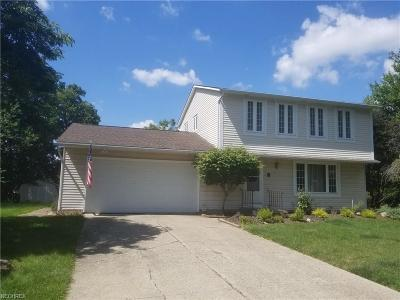 North Royalton Single Family Home For Sale: 3275 Dales Ct