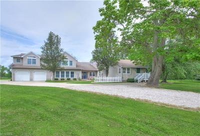 Lake County Single Family Home For Sale: 14487 Ford Rd