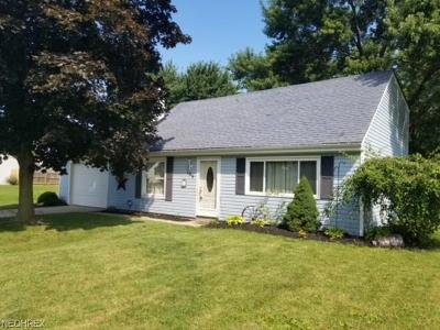 Elyria Single Family Home For Sale: 165 Valley Forge Cir