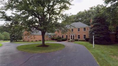 Chagrin Falls Single Family Home For Sale: 7640 Water Fall Trl