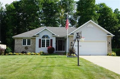 Painesville OH Single Family Home For Sale: $225,000