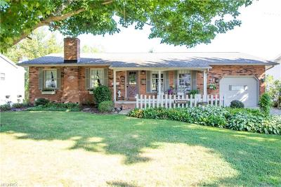 Youngstown Single Family Home For Sale: 3092 Straley Ln
