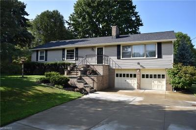 Geauga County Single Family Home For Sale: 11842 Joy Acres Ln