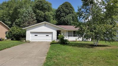 Wadsworth Single Family Home For Sale: 260 Falk Ave