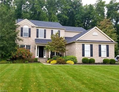 Broadview Heights Single Family Home For Sale: 248 Wilmington Dr