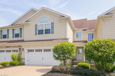Lake County Condo/Townhouse For Sale: 10964 Spear Rd