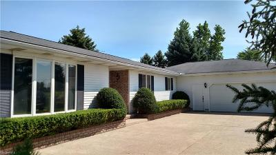 Litchfield Single Family Home For Sale: 3951 Beat Rd