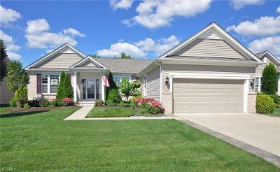 North Ridgeville Single Family Home For Sale: 9172 Prairie Moon