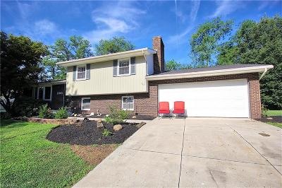Single Family Home For Sale: 12963 Jamestown