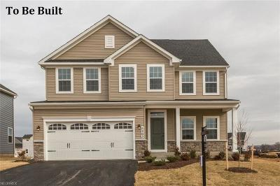 North Ridgeville Single Family Home For Sale: 67 Rummel Mill Dr