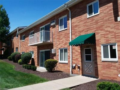 Broadview Heights Condo/Townhouse For Sale: 501 Tollis Pky #280F