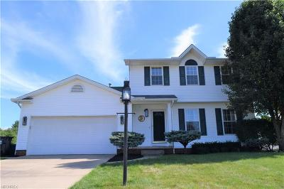 Mineral Ridge Single Family Home For Sale: 5137 Pine Shadow Ct