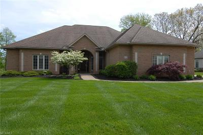 Zanesville Single Family Home For Sale: 1777 Longhill Dr