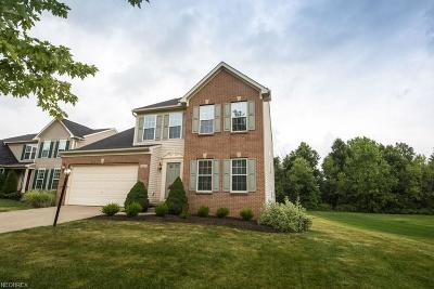Twinsburg Single Family Home For Sale: 1815 Curry Ln