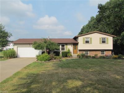 Ravenna Single Family Home For Sale: 4873 Industry Rd